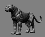 Big cats in game